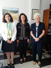 Reunión de la Vicepresidenta 1ª del Consejo General de Colegios de Logopedas, Dª Carmen Castro Iglesias,con la Subdirectora General de Títulos del Ministerio de Educación y Ciencia, Dª Margarita de Lezcano-Mújica